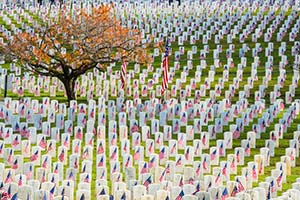 cemetery-operation-homefront-memorial-day