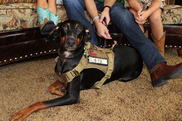 blog - operation-homefront-rent-free-apartments-grand-opening-wounded-veteran-housing-san-antonio-IMG_dog2